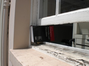 Book in the window